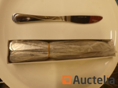 120 table Knives 60209012