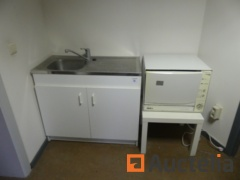 2-door sink unit with small dishwasher