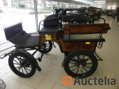 New horse carriage HANSMEIER SHETTYWAGEN BIGMIX