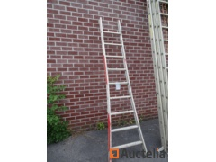 Perfecty 9 Ladder Single scale height 2M50