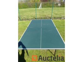 table-tennis-table-sponeta-loisir-933186G.jpg